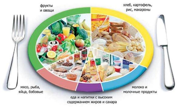 Вся правда о белках, жирах и углеводах
