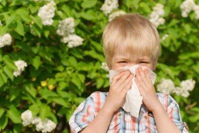 Аллергические проявления у детей