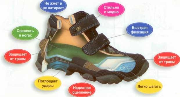 Какой должна быть правильная детская обувь?