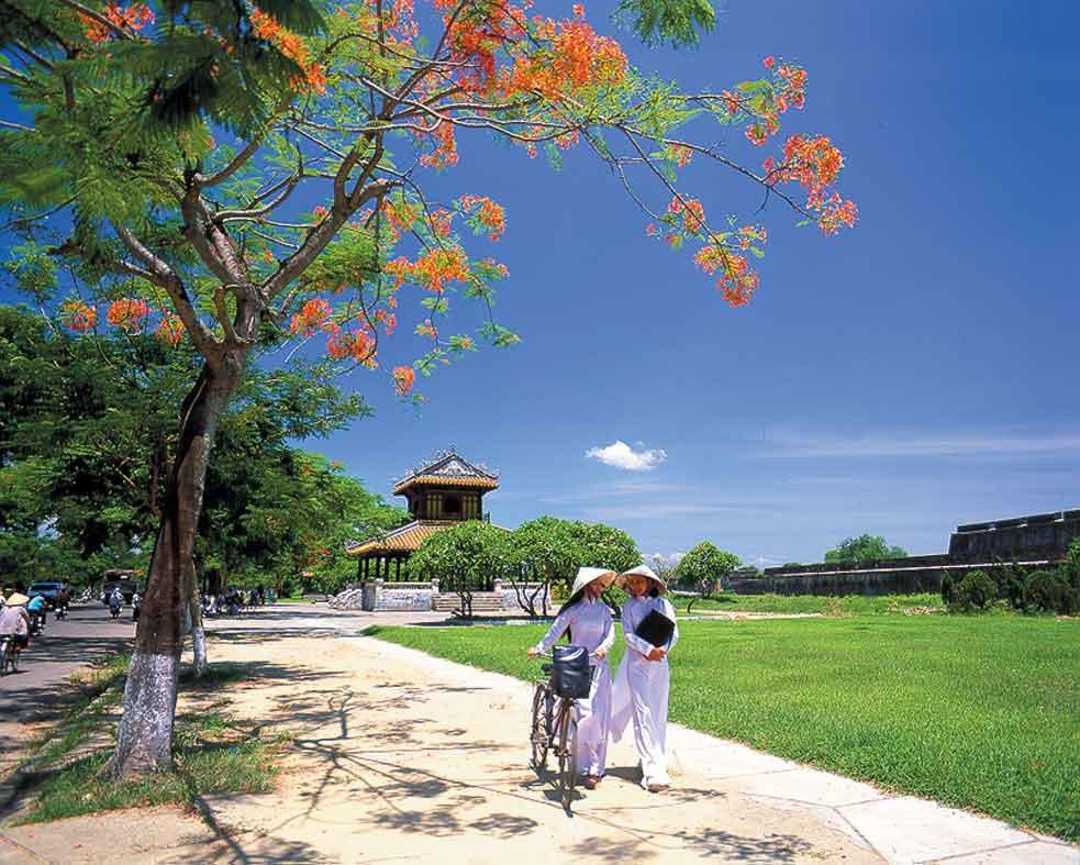 Направления туристических потоков из России меняются: осваиваем Вьетнам