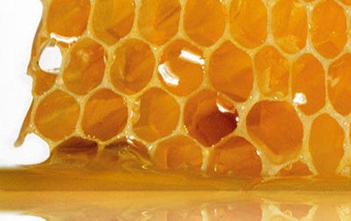 Чем полезен пчелиный воск